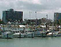 boats and  shoreline at Corpus Christi, Texas